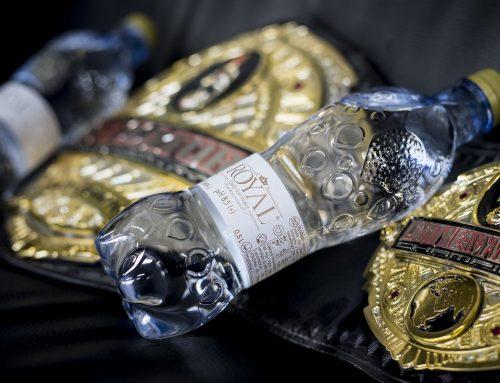 Attila Végh – MMA Bellator champion
